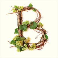 vinarija-bacic-logo-dolac